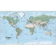 World Physical Large